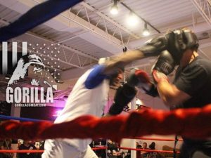 Call For Fighters In-House EXHIBITION Bouts IV Feb. 10th 2017
