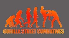 goril_street_evolu_clear